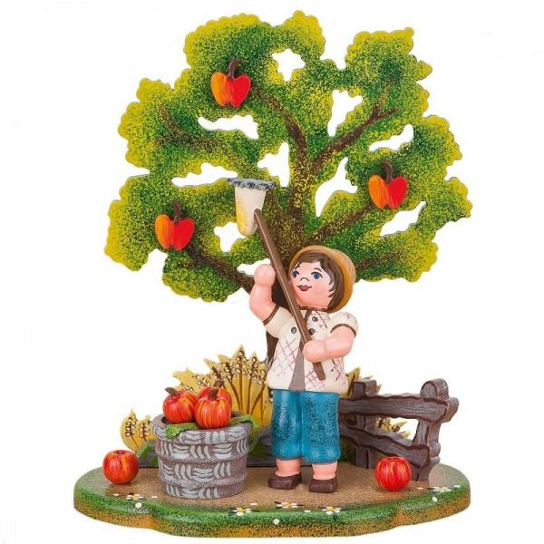 Hubrig Landidyll Apfelernte